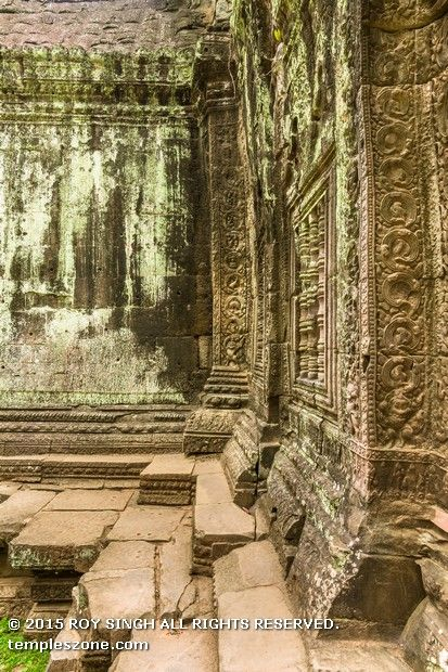 At Ta Prohm, near Angkor Wat and built by the epic builder king Jayavarman VII in the late 1100's, a small carving on a crumbling temple wall seems to show a dinosaur - a Stegosaurus carving, to be exact. The hand-sized carving can be found in a quiet corner of the complex.
