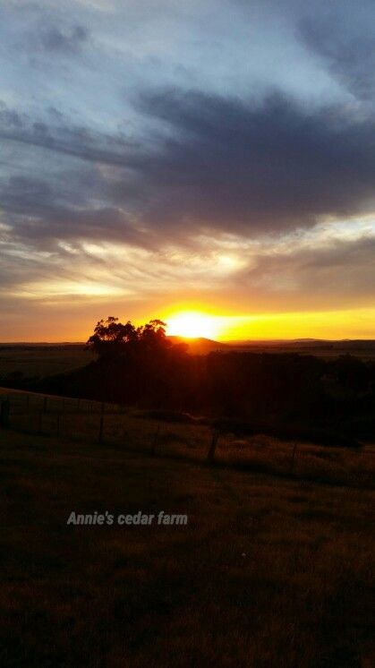 November 24th 2015 #painted #sunset #peace #tranquility #quiet #medidate #resting #restful #peaceful #break #getaway #hiking #VisitVictoria #horseriding #farmstay #family #couples #UpperPlenty #Whittlesea #Funfields #alpacas #farmstay #accommodation