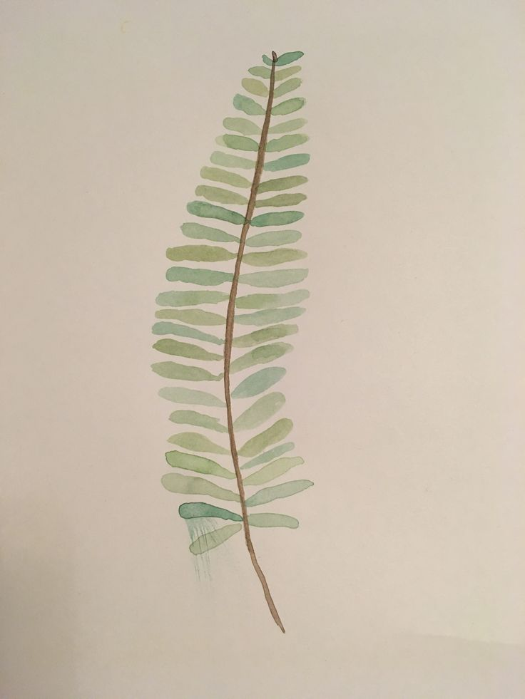 Frond #watercolour