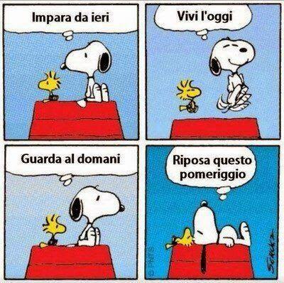 Mari da solcare: Snoopy and me
