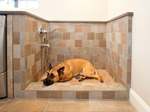 Go bigger with the drain. Longo recommends using a 3-inch drain in a pet washing station. It will handle dog hair better than the standard 1...