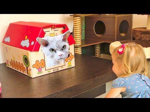 Злые коты пытались напасть на Настю в Кошачьем Кафе Смешные кошки и котята и Скай из Щенячий патруль -  #animals #animal #pet #cat #cats #cute #pets #animales #tagsforlikes #catlover #funnycats Идем в кафе с кошками в Сингапуре. Там живет лучший кот в стране по итогам 2016 года, он встретил нас при входе. Три