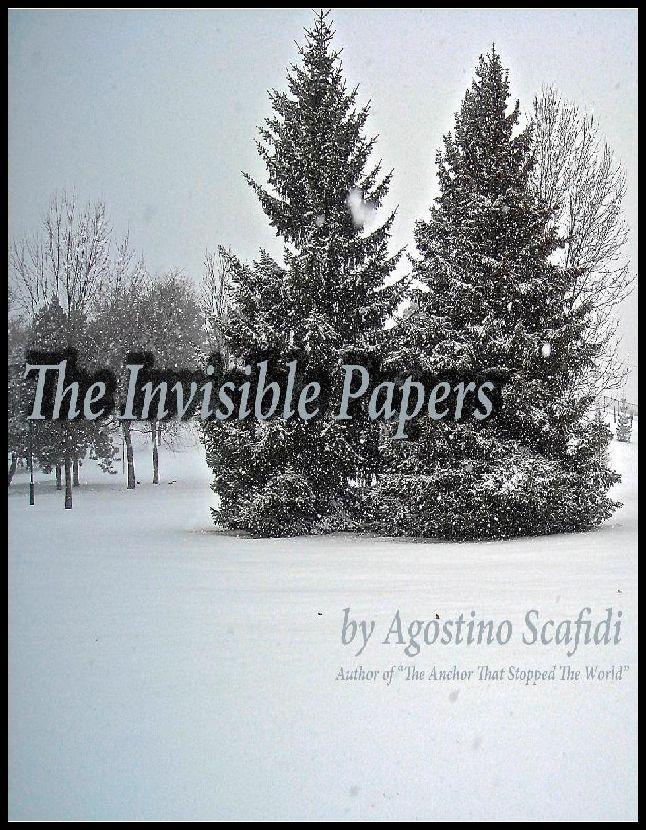 Book by Agostino Scafidi.