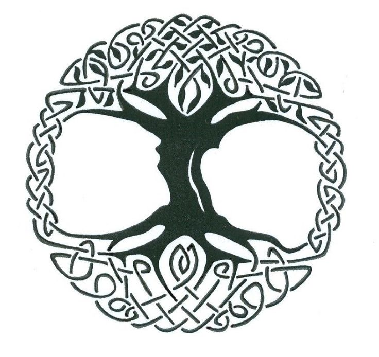 Celtic Tree of Life Vinyl Window Sticker Decal Car Wall Irish Large 10""