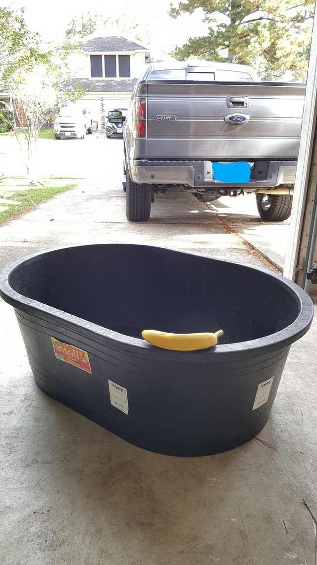 Diy Outdoor Dog Washing Station For Under 75 Diy Dog Wash Dog