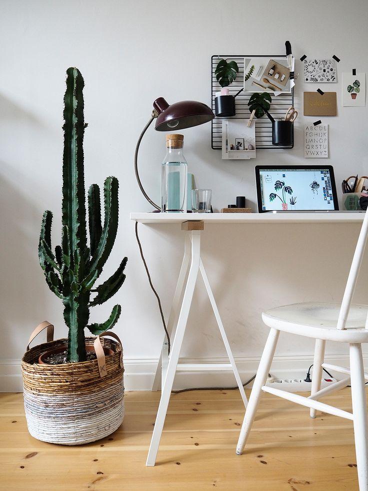 1 Kaktus, 3 Stylings – Ein Kaktus auf Reisen | craftifair