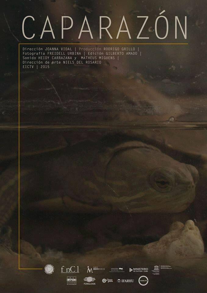 Cartel/afiche de CAPARAZÓN cortometraje cubano de Joa Vidal #joavidal #caparazon #shortfilm #festival #equinoxio #competencia #bogota #cine #eictv #cuba #colombia #art #pelicula #cortometraje #ficcion #new