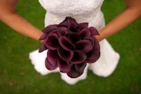 Plum calla lillies
