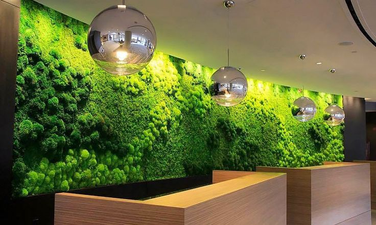 Preserved moss art is an easy-to-care-for version of the green wall.