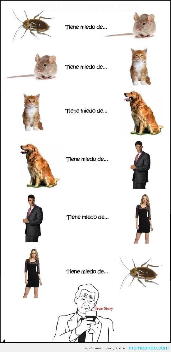 Memes Para Facebook en Español ->> MEMEando.com << - Page 12