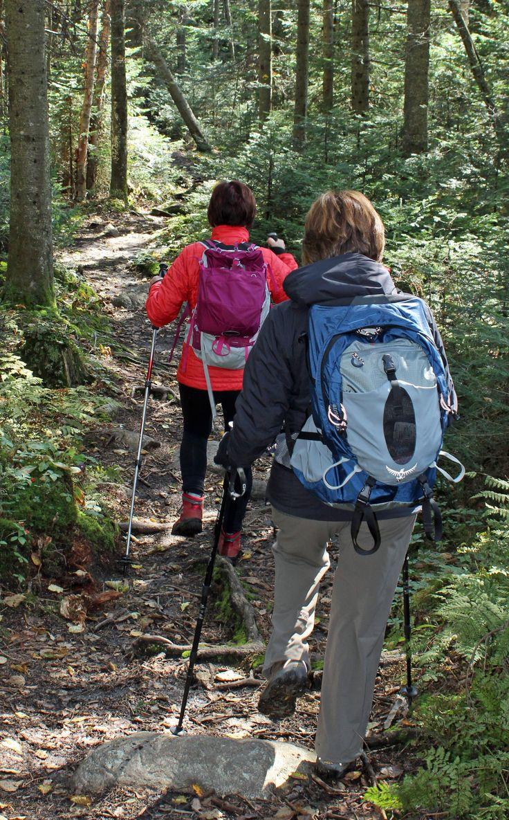 La randonnée pédestre à St-Donat c'est un accès gratuit à plus de 150 kms de sentiers entretenus. Vous y trouverez tous les niveaux de difficultés, de débutant à expert. L'Étoile du Nord vous offre un hébergement à coût raisonnable et on vous prépare des sacs à lunch santé pour vos randonnées.  Pour les cartes des sentiers, https://clubpleinairsaint-donat.org/cartes-et-sentiers/  #etoilestdonat  #st-donat #randonnéepédestre #randonnée  #lanaudière #pleinair #saint-donat #clubdemarche