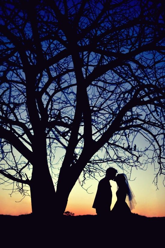 Gorgeous!  Definitely want a pic like this maybe by the barn with a tree too tho!