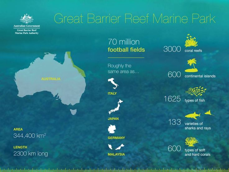 The Great Barrier Reef – big, beautiful and diverse