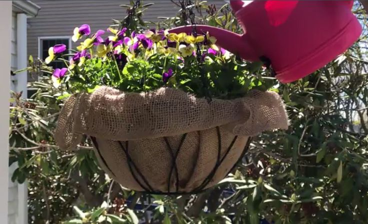 Tired of Leaky Coconut Liners? Try This Hanging Planter Hack!