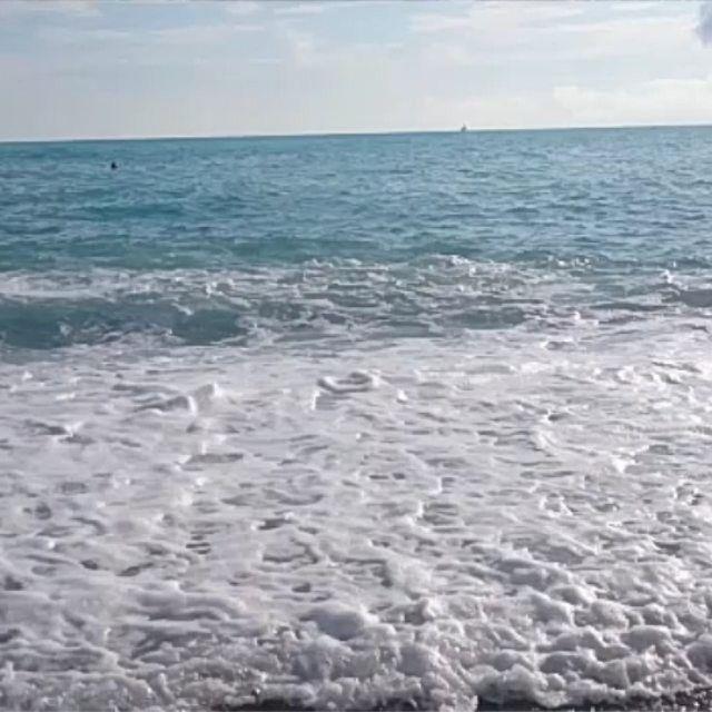 Чёрное море. Сегодня наши экскурсии не пользуются популярностью. Отличная погода. Все идут на море. И мы тоже.  #море #черноеморе #штиль #пена #волна #берег #качает #черноеморе🌊 #купания #видео #видеоигры #видеодня #instaview #instavideo {{AutoHashTags}}
