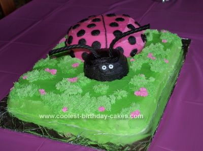 Homemade Ladybug Birthday Cake Idea: This Ladybug Birthday Cake Idea was my first decorative cake ever.  The head and body of the cake were both made with bowls.  The bottom was formed with