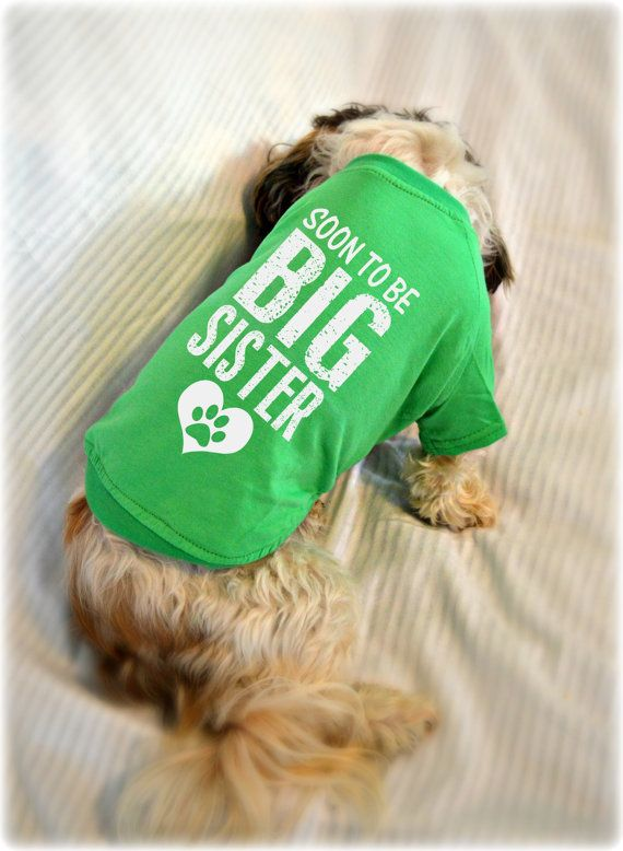 Good Gifts For Dog Lovers Part - 37: New Baby Dog T-Shirts. Only Child Big Brother Dog Shirt. Gift For Expecting  Mother.
