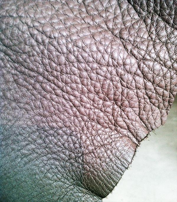 Elmotique Leather