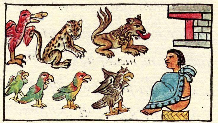 Descubre estas criaturas misteriosas del mexico prehispanico y su relación con los seres humanos y la manera de ver el Universo