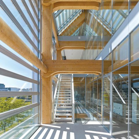 shigeru bans timber skeleton for tamedia office in zurich wood frame construction