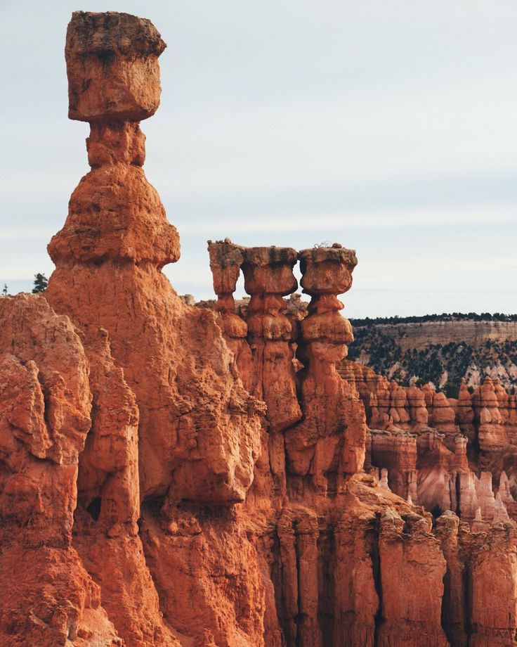 """Plan your next road trip through Utah's """"Mighty 5"""" National Parks!"""