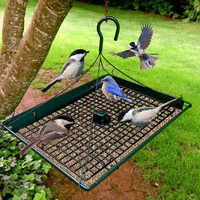 how to build a platform bird feeder