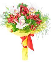 Орхидеи в красном