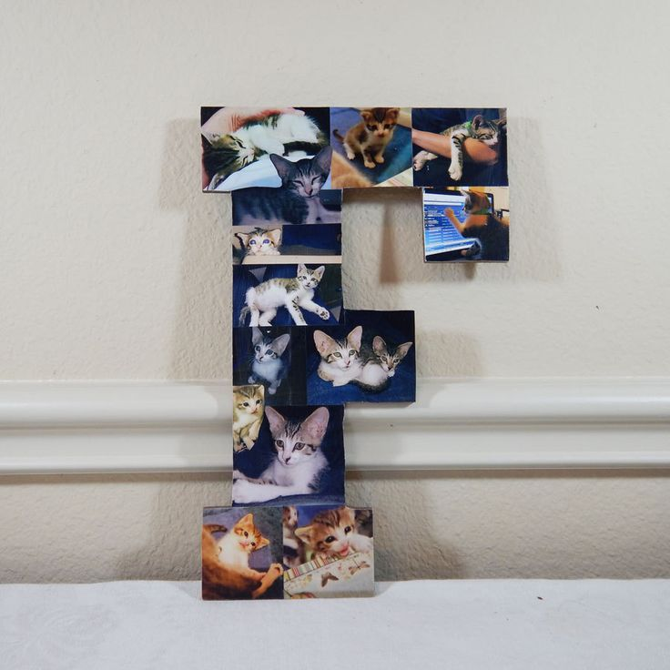Custom Pet Photo Collage, Letter Photo Collage, Wall Art, Personal Collage, Photo Collage, Personal Photos, Customized Photo Letters, Wall Art by LybelleCreations on Etsy