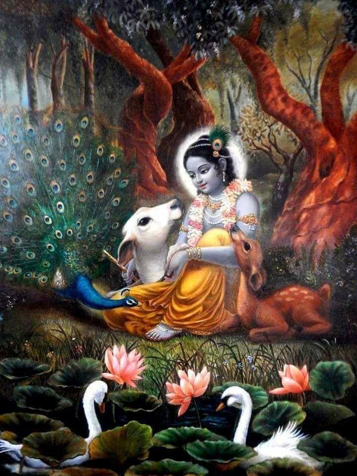 Картинки по запросу krishna
