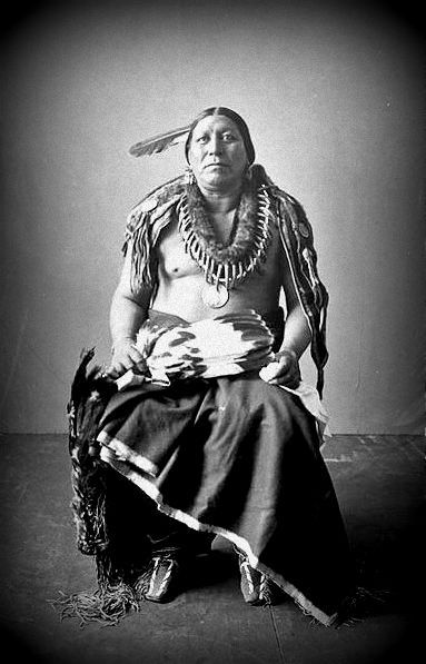 Roan Chief, at the Louisiana Purchase Exposition in St. Louis, Missouri - Pawnee - 1904