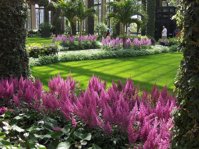 Longwood Gardens | PA  Love The Pink Astilbe Mixed With The Beautiful Shade  Planting
