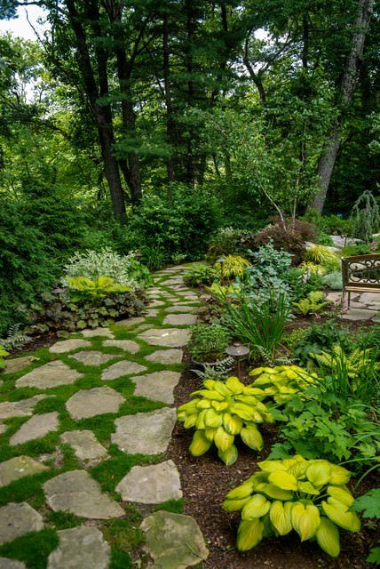 heres a great landscape option for a heavily shaded yard