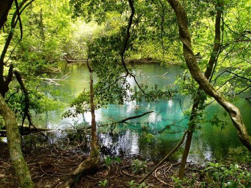 丸池様|見どころ|やまがた庄内観光サイト
