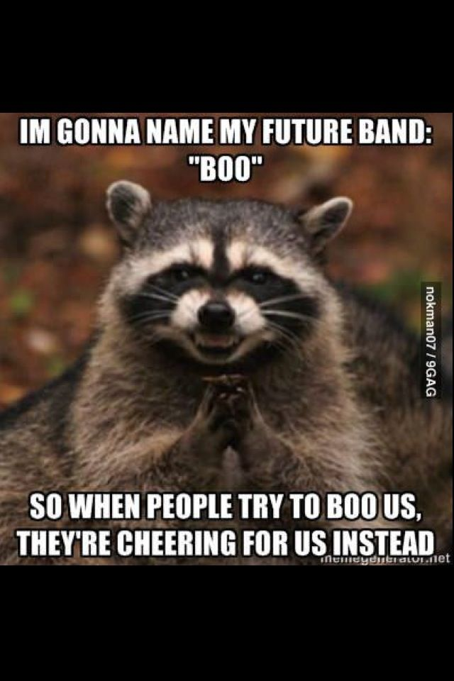 78 best funny animal quotes on pinterest animal quotes funny animal