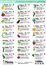 Nuevo calendario de siembra para el #huerto en el mes de mayo de #Plantea