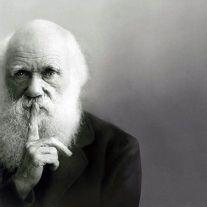 darwin; I would love this as a poster...it would totally creep my kids out.