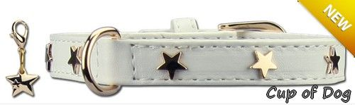 Collier chien Twinkle Little Star White https://www.cupofdog.fr/collier-harnais-chihuahua-petit-chien-xsl-243.html