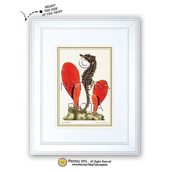 Seahorse hugging seaweedCoastal art printBeachy by naturapicta, $5.99 © NATURA PICTA All Rights Reserved