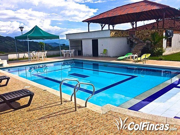 Fotos De :: Finca Finca san antonio en Calarcá Quindío :: Colfincas.com