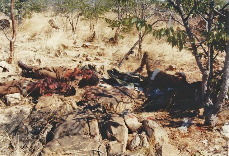 Omega 201 Bn landmine casualties