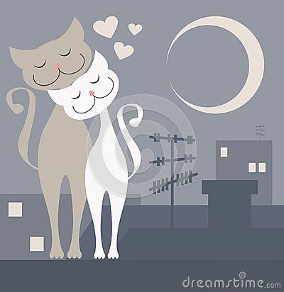Romantic view of two cats in love  on the roof in the night