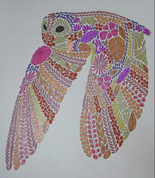 Coloring Ideas Owl In Flight