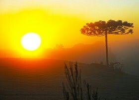 Pôr - do- sol em Lagoa Vermelha - RS. Lindo!!!!