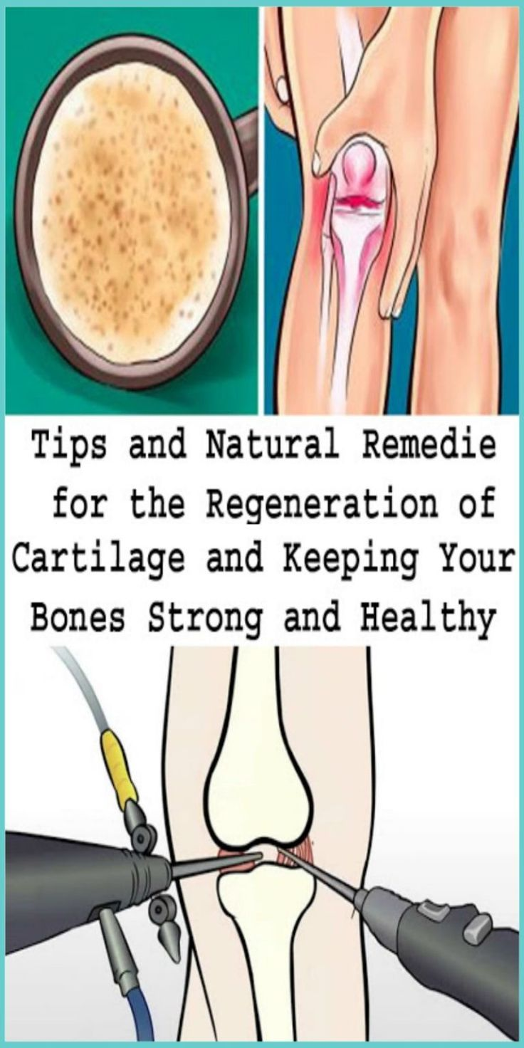 Difference Between Bone And Cartilage Manual Guide