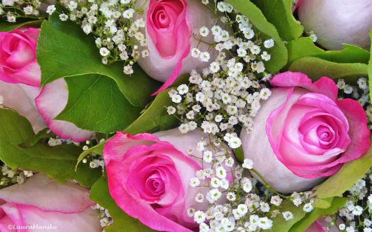 Happy Mother's Day! Enjoy 25 Loving Quotes & Luscious Flower Photographs