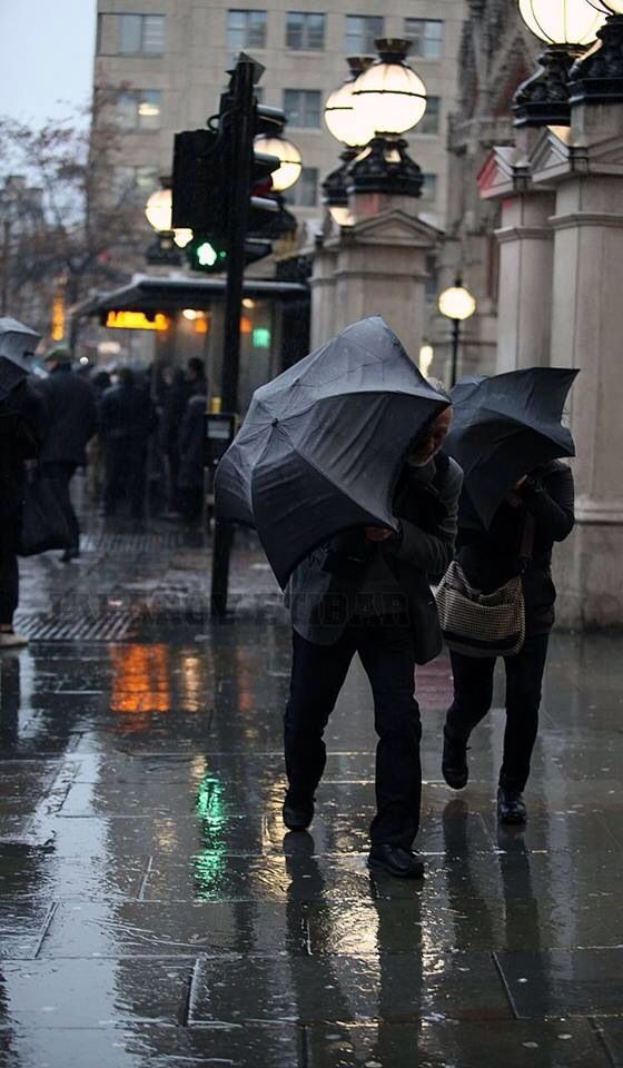 Rain,embraces us....simply wonderful!