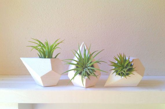 Plants & Planters - This faceted teardrop is pretty much my new favorite thing! You will receive a set of 3 Each Measures: 3 long x 2 thick with a 7/8 hole **