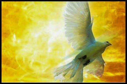 Vi spieghiamo quali sono i simboli dello Spirito Santo