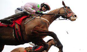 Sempre Medici for shock win in Cheltenham Festival Champion Hurdle