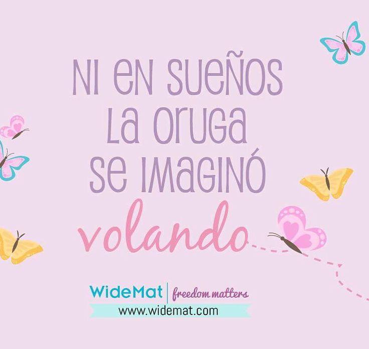 #vida #sueños #yoga #frases #frasedeldia #frasesbonitas #frasesdelavida #frasesenespañol #motivacion   Más en www.widemat.com